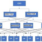 Organizational structure example – Functional 2 - innocentric Blog