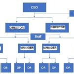 Organizational structure example – Line-and-staff - innocentric Blog