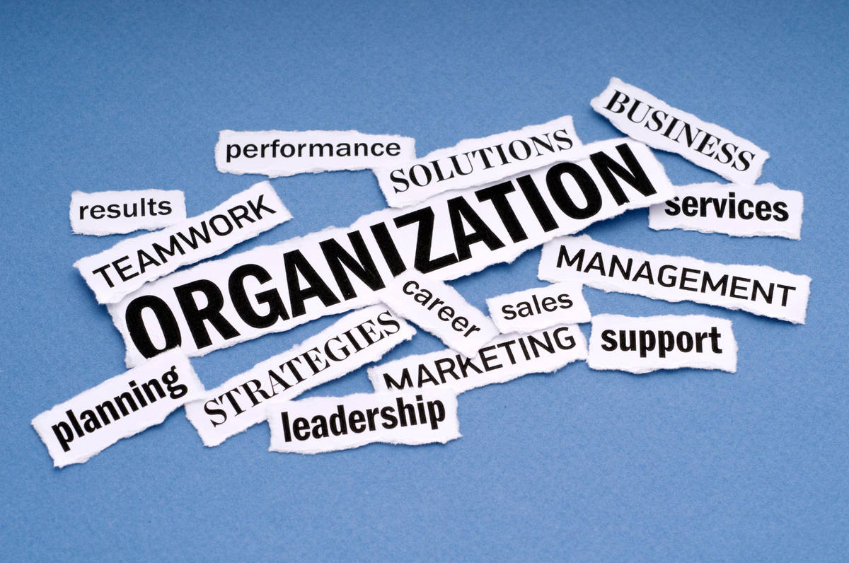 organization_innocentric blog